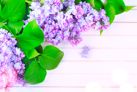 composition: Lilac flowers bunch on white planks wood background