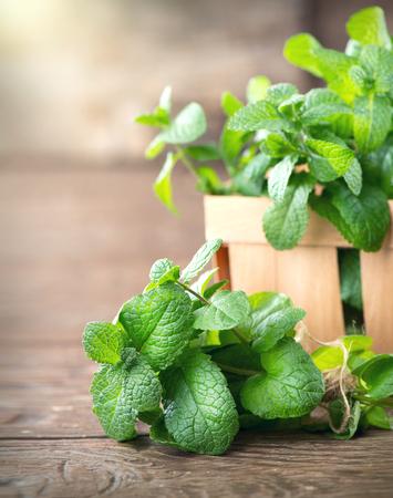 Munt. Bos van vers groen organisch muntblad op houten tafel close-up