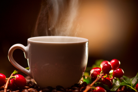 vintage background: Coffee. Cup of steaming coffee with the ripe coffee berries