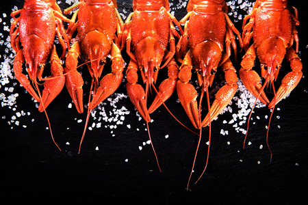 table top: Crawfish. Red boiled crayfish with herbs on stone slate dark background