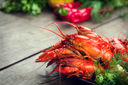river: Boiled red crayfish or crawfish with a herbs