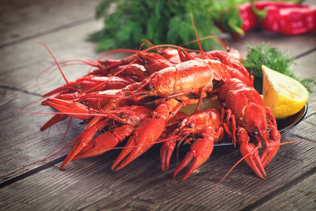 Boiled red crayfish or crawfish with a herbs