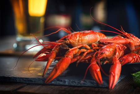Red boiled crayfish with lemon and herbs on stone slate. Crawfish closeup Standard-Bild