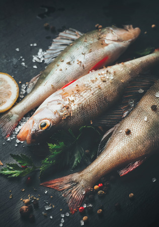 Fresh fish with aromatic herbs, spices, salt. Raw perches on dark slate tray Stock Photo