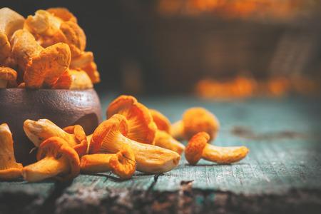 오래 된 소박한 배경 위에 그릇에 원시 야생 chanterelles 버섯
