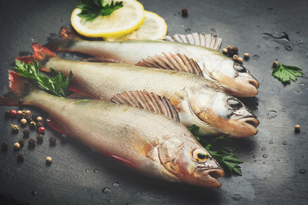 Fresh fish with aromatic herbs, spices, salt. Raw perches on dark slate tray Standard-Bild