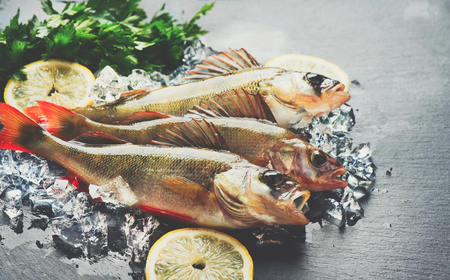 occupation: Fresh fish on ice with aromatic herbs, spices, salt. Raw perches on dark slate tray Stock Photo