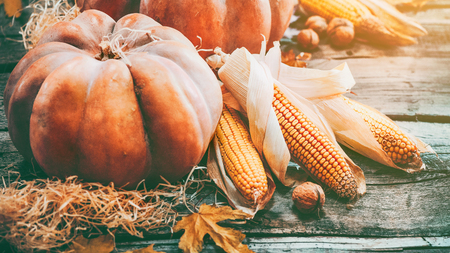 Thanksgiving day background. Orange pumpkins over wooden background Standard-Bild
