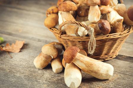 Ceps mushroom. Boletus closeup on wooden rustic table Stock Photo