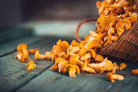 Ruwe wilde chanterelles champignons in een mand over oude rustieke achtergrond Stockfoto