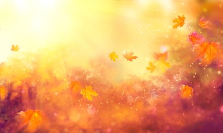 Fondo de la caída. Hojas coloridas del otoño y llamaradas del sol Foto de archivo - 85330577