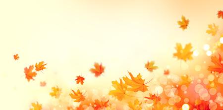 Jesienią tła. Spadek streszczenie tle z kolorowych liści i sun flares