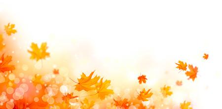 秋の背景。秋紅葉と太陽フレアと抽象的な背景