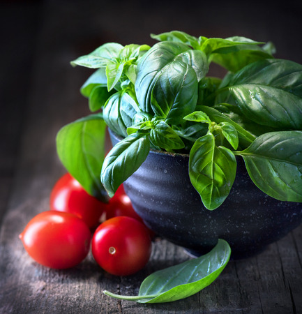 Basil and tomatoes on wooden table. Italian homemade food ingredients Banco de Imagens - 86896686