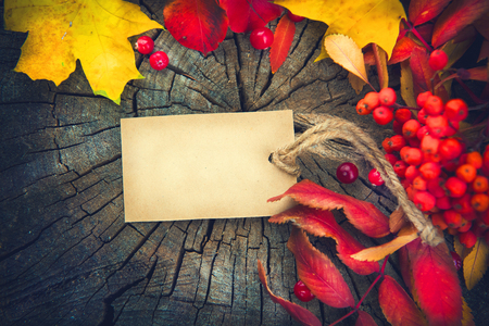 Autumn background with blank greeting card and colorful leaves over wood