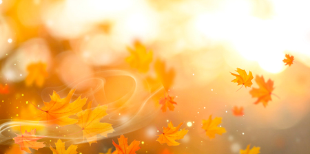 Autumn backdrop. Person holding autumn leaf with sun beam over blurred autumn background