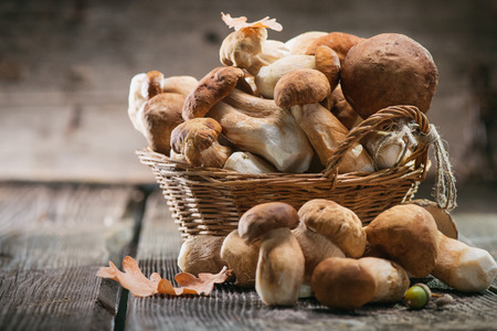 Ceps mushroom. Boletus closeup on wooden rustic table Standard-Bild