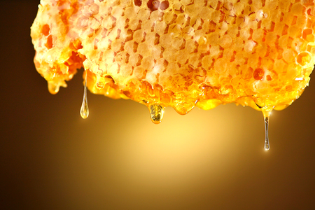Honey dripping from honey comb on yellow background. Thick honey