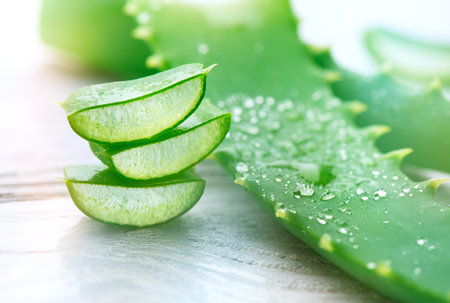 Aloe Vera closeup. Sliced Aloevera natural organic renewal cosmetics, alternative medicine. Organic skincare concept. On white wooden background Imagens - 96466627