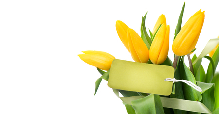 Mathers Day holiday spring yellow tulips flower bunch with blank greeting card. Beautiful tulip flowers bouquet isolated on white background Stock Photo