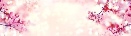 Frühlingsgrenze oder Hintergrundkunst mit rosa Blüte. Schöne Naturszene mit blühendem Baum und Sonnenaufflackern