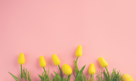 Easter background. Bright yellow eggs and vivid spring blooming tulip flowers and fresh grass over pink background. Easter backdrop
