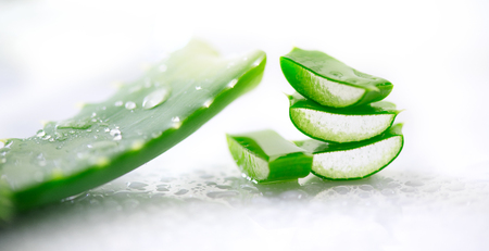 Aloe Vera gel closeup. Sliced Aloevera natural organic renewal cosmetics, alternative medicine. Organic skincare concept