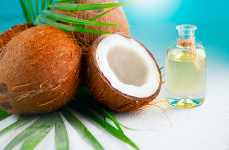 Coconut oil in a bottle with coconuts and green palm tree leaf over blue. Healthy eating. Skincare concept