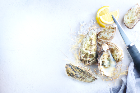 Oyster. Fresh oysters closeup with knife. Oyster dinner in restaurant. Gourmet food. Border design with copy space for your text. Top view, flatlay