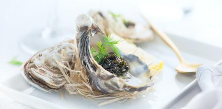 Frische Austern mit schwarzem Kaviar. Geöffnete Austern mit schwarzem Störkaviar. Gourmet Essen. Delikatessen