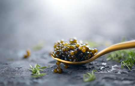 Black caviar in a spoon on dark background. Natural sturgeon black caviar closeup. Delicatessen