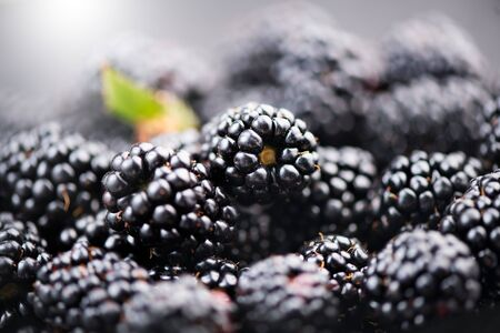 Blackberry background. Fresh ripe organic blackberries closeup