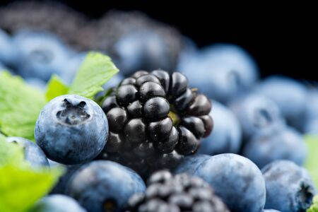 Blueberry and blackberry background. Ripe and juicy fresh picked blueberries rotate closeup