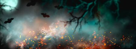 Fantasy Halloween Background. Beautiful dark deep forest backdrop with smoke, fire, vampire bats. Halloween magic holiday collage Art design, mysterious Frame. Copy space for your text. Wide screen Stock Photo