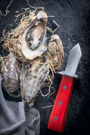 Fresh Oysters close-up with knife, served table with oysters and lemon. Healthy sea food. Oyster dinner in restaurant. Dark background. Seafood, Gourmet food. Flatlay, top view. Vertical image Stock Photo - 131366204