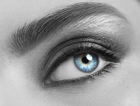 Beautiful woman eye close-up. Young Woman Blue one eye macro shoot. Holiday smoky eyes make-up, Macro Closeup eye looking up, closeup. Eyelashes, eyebrows, iris close-up. Black and white Stock Photo
