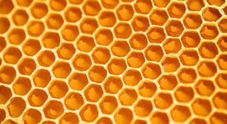Honingraat. Honingkam vol verse biologische zoete honing, gele achtergrond, cellen. Gezond voedselconcept, dieet, op dieet zijn. Gedraaide achtergrond, achtergrond.