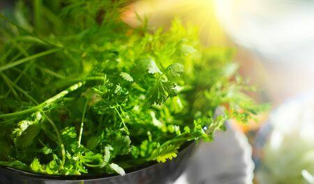 Parsley. Fresh organic parsley leaves in metal colander on a table. Diet, dieting concept. Vegan food, healthy eating. Seasonings