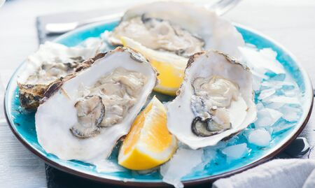 Fresh Oysters close-up on blue plate, served table with oysters, lemon and ice.