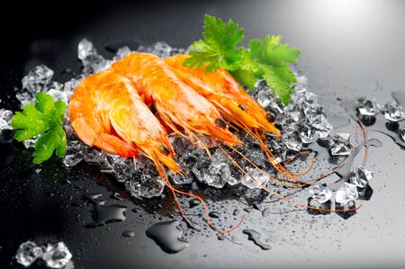 Shrimps. Fresh Prawns on a Black Background. Seafood on crashed ice served with herbs, dark background, Served food, preparing healthy food, cooking, diet, nutrition concept.