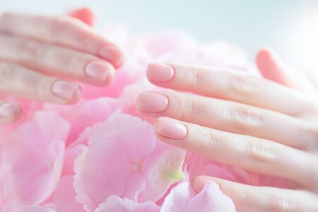 Manicure, beauty nails. Beautiful Woman's hands, Spa and Manicure concept. Female hands with beautiful natural pink french elegant manicure. Soft skin, skincare concept. Salon. Treatment