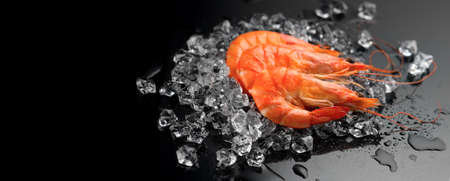 Shrimps. Fresh Prawns on a Black Background. Seafood on crashed ice, dark background, preparing healthy food, cooking, diet, nutrition concept. Served food, preparing healthy food, cooking, diet