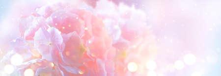 Hydrangea pink flower closeup. Beautiful soft colors Hortensia art design. Beauty pink colour Hydrangea flower close up. Watercolor nature floral backdrop. Easter, Birthday, Nature border art design. Stock Photo