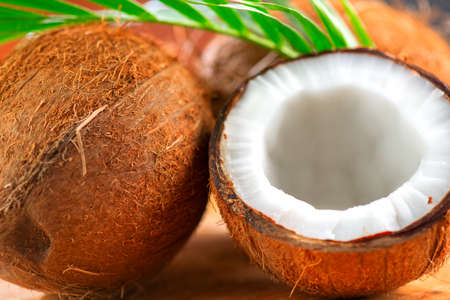 Coconut with coconuts green palm tree leaf closeup. Beauty treatments. Coco nut close-up. Healthy Food, skin care concept. Vegan food, cosmetics