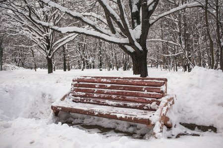 On a pensive tranquil winter day the snowy city park is full of mysterious charm and looks like a Snow Queen`s estate.