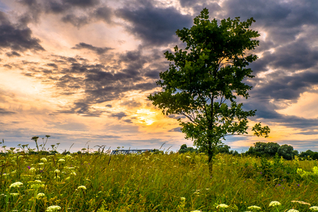 Dramatic sunset sky over the flowered Bogolyubovo meadow, Vladimir region, Russia. Picturesque peaceful corner of nature away from the urban noise and hustle. Stock fotó