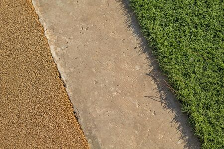 topdown: Yellow Rubber Wetpour playground floor surface next to concrete and artificial grass.
