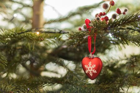 is green: Designer Christmas card background with copy space, green xmas fir tree out of focus background with bright red heart hanging decoration with white snowflake