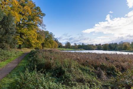 秋葉暖色美しい晴れた日に公園、Abbey Fields、ケニルワース、ウォリックシャー、イギリス、2017年 11 月で。 写真素材