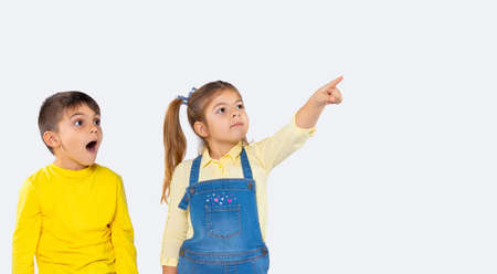 Banner. A preschool girl points with her forefinger to something in the distance, the boy looks and is surprised. High quality photo